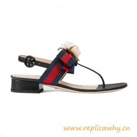 Low Heel Thong Leather Sandal with Web Bow and Silk Flower